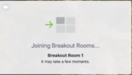 joining breakout rooms in a zoom mediation